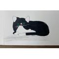 Gabriel's cat