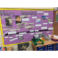 Mary Anning display