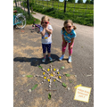 Out and About making sculptures- India Oak Class