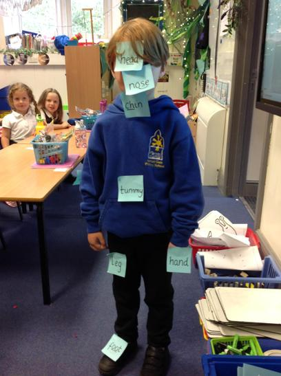 The children had to read the labels and then put them in the correct place.