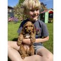 Dash the new member of Bertie's family