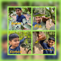 Aryan has been learning about the different types of plants that grow in India.