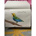 Dorothy's bird drawing