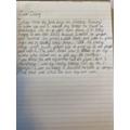 Luna's Monkey Diary