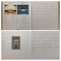 Bella's super La Luna writing