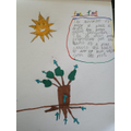 Haniel's Science - Plant and water transportatio