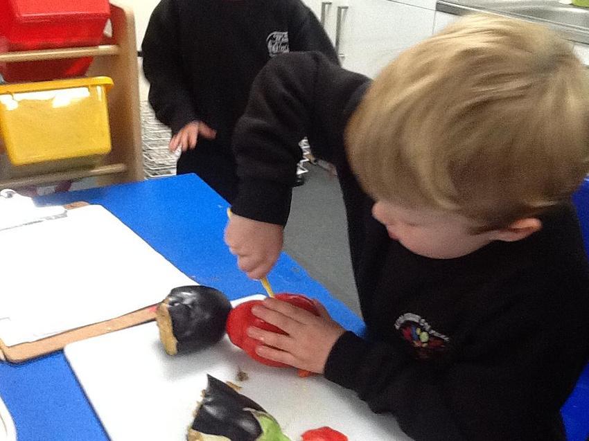 exploring vegetable seeds