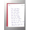 Alex's Poem