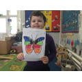 Look at my symmetrical butterfly