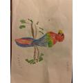 Tobi's parrot.jpg