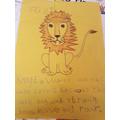 Lion Fact File