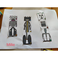 Robot sorting - well done