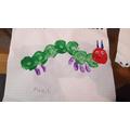 What a beautiful caterpillar