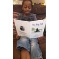 Daniel is enjoying his book