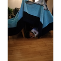 its a bear hibernating in his cave