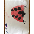 Millie's ladybird.jpeg