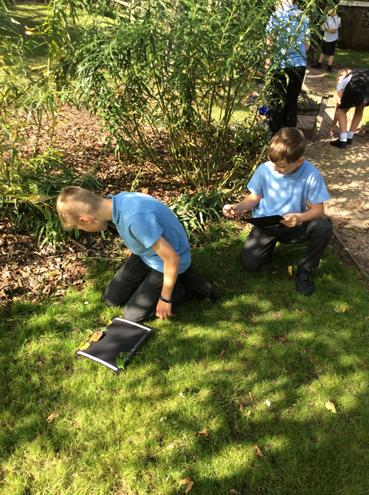 Adding nature items to our poetry borders