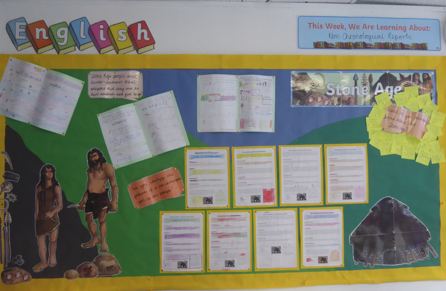 Y3 English non-chronological reports