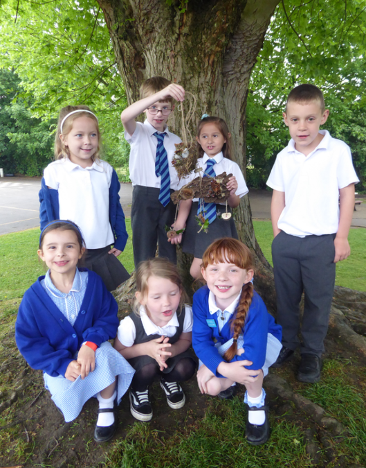 Green Team Horticulture Show Entry KS1