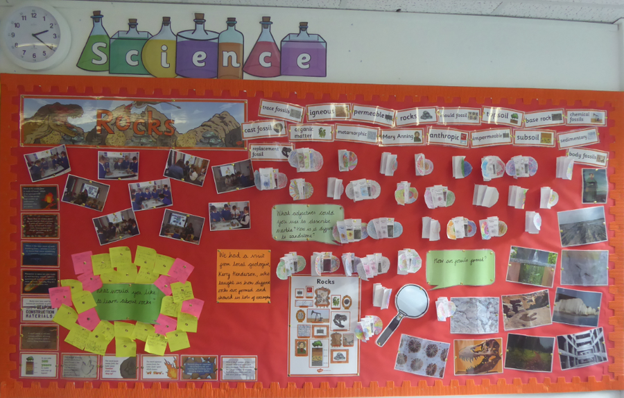 Y3 Science working wall