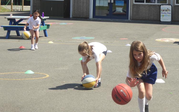 Basketball Taster Session