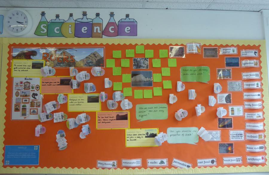 Y3 Science