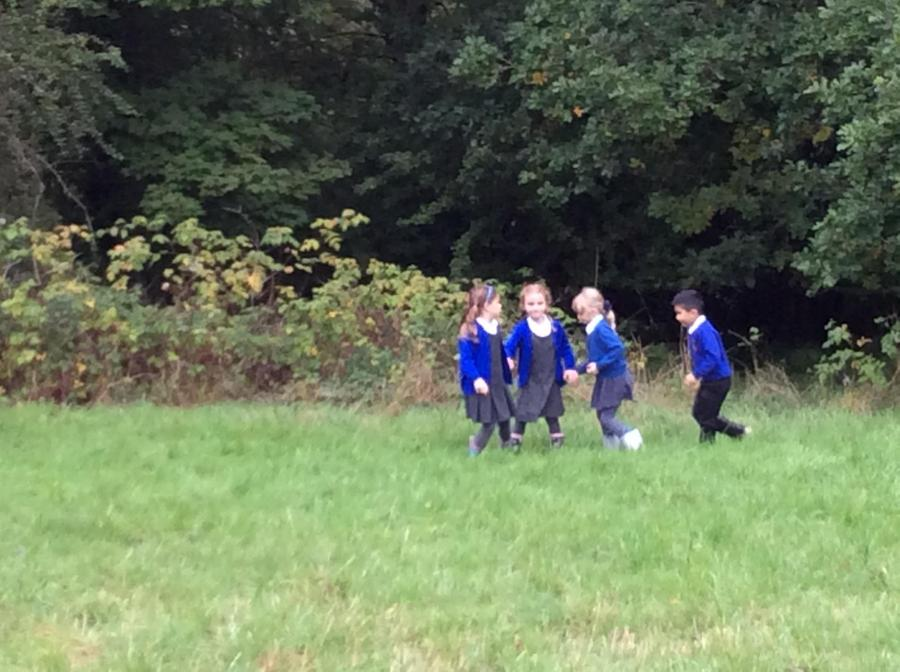 Y1 Woodland Geography Field Walk