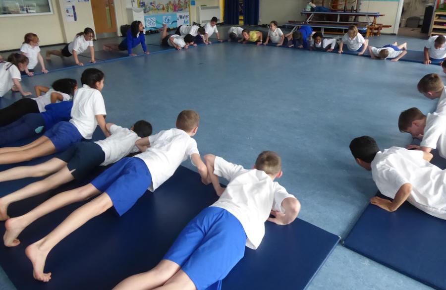 Y5 Yoga sessions