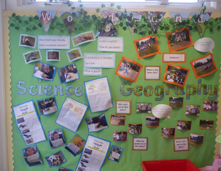 Y1 Science and Geography