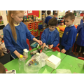 Making our Rubbish instruments