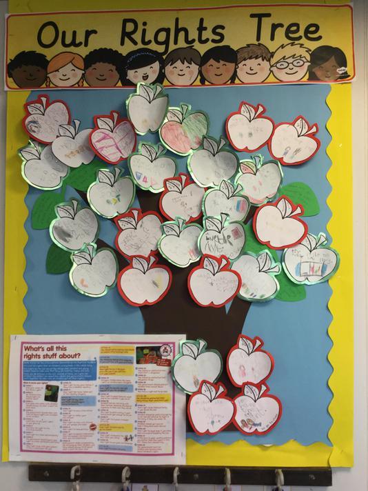 Cedar Class Rights Tree