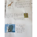 Animal Adaptations, By Lily