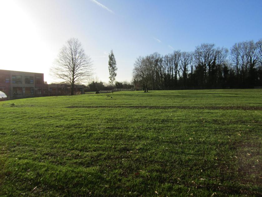 School Grounds - January 2019