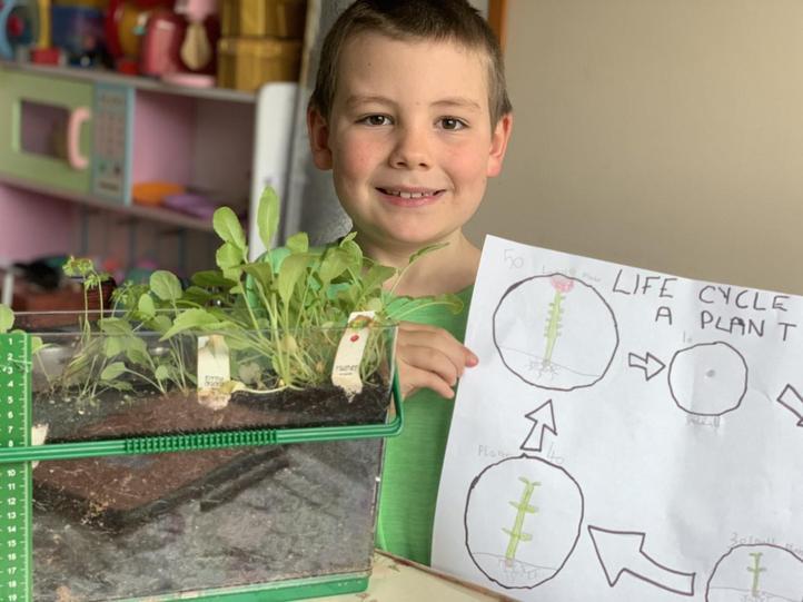 Logan's plant life cycle