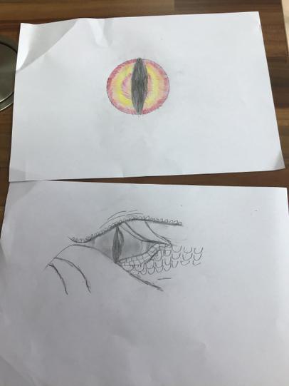 Maisy's Dragon Eye Artwork