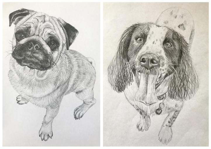 Sketches by Miss Taylor
