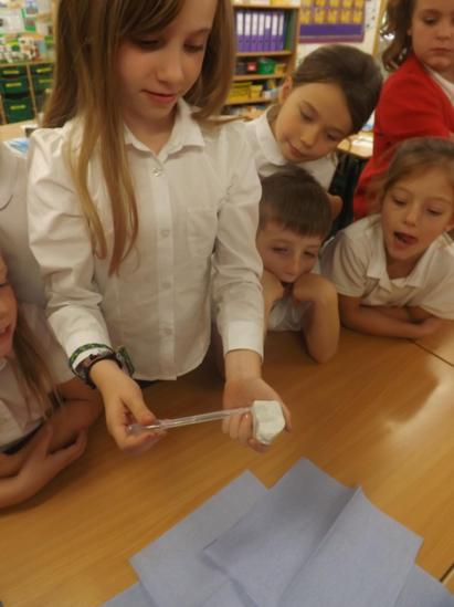 Year 3 Permeability of Rocks Investigation