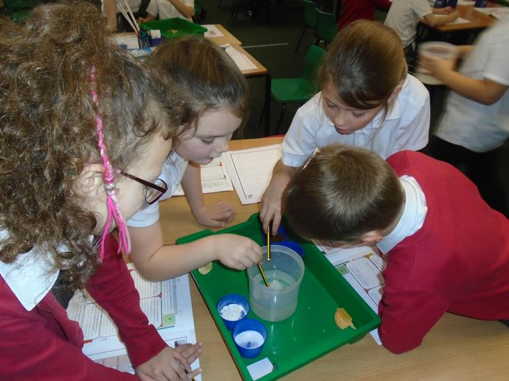 Year 4 Dissolving Investigation