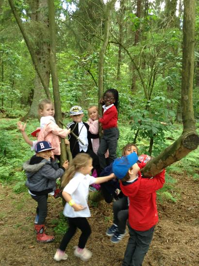 FS2 Visit to Dalby Forest