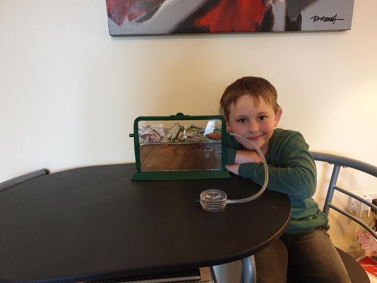 Jacob enjoyed bug hunting at school.