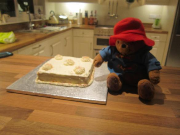 DId Paddington eat the whole cake Casey?!!!