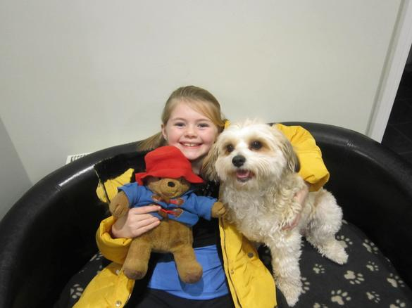 Paddington fell in love with Daisy!