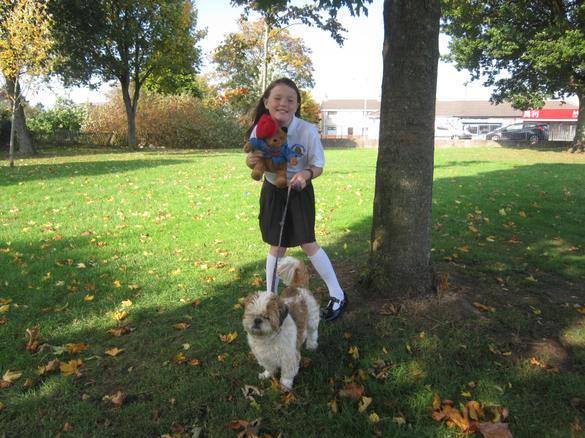 Paddington met Auntie TIna's dog, Buster