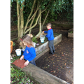 Building a roof for the fairy house using natural materials.