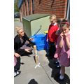 Class 5 finding out about shadows