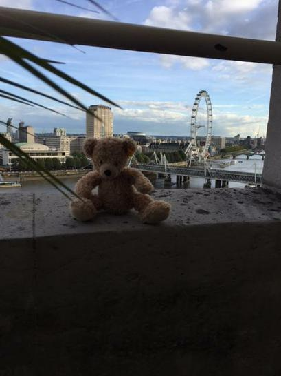 Flynn overlooking the London Eye