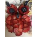 Fruit face-Ali Haider