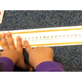 Working on number lines