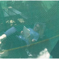 Mrs Hart reading on the trampoline
