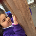 Discovering materials in our playground